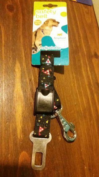 cinturón de coche para perro