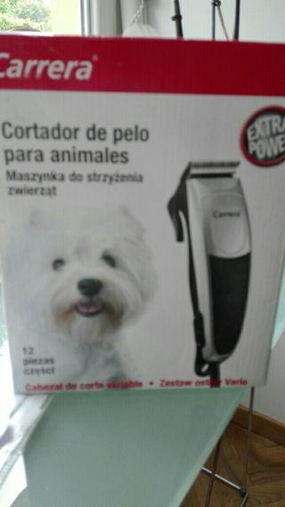 cortador de pelo perros