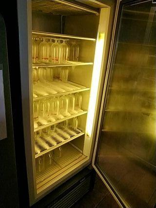 Nevera congelador Expositor