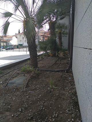 Jardinero albañil
