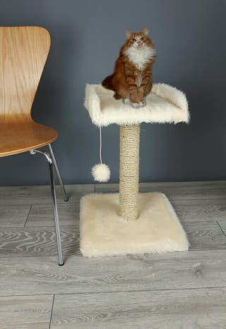 cat furniture, scratcher, scratching post with bed