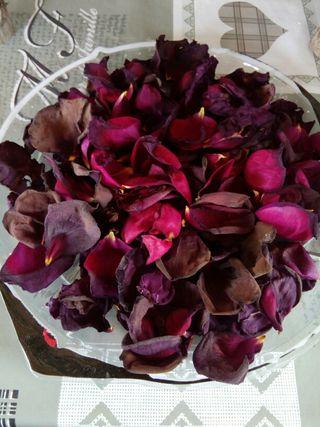 petalos Rosas Secas