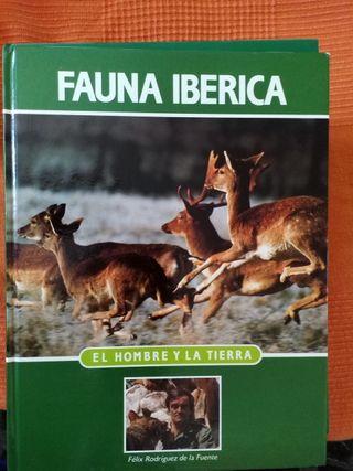 """Fauna Iberica """"El hombre y la Tierra"""""""