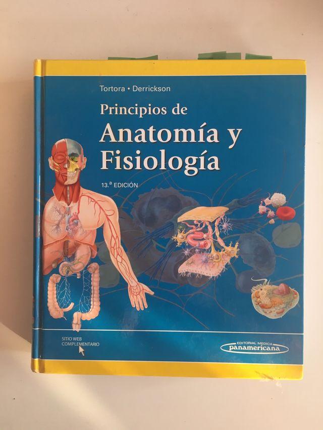 Anatomia libro de segunda mano por 40 € en Manresa en WALLAPOP