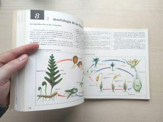 Libro Ciencias naturales. Dimas Fernández Galiano.