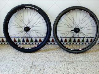 Conjunto ruedas Bicicleta de montaña