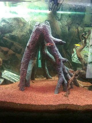 raiz artificial acuario