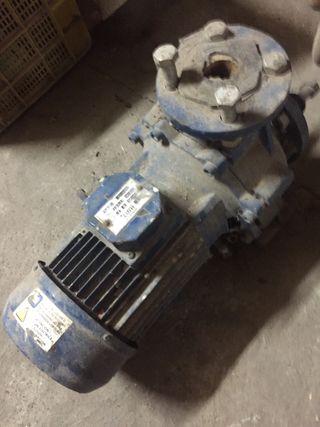 Motor electrico 4 kv