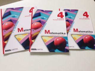Dbh 4 matematika