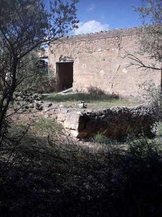 Finca 220.000 m2 en Tarragona con casa y agua