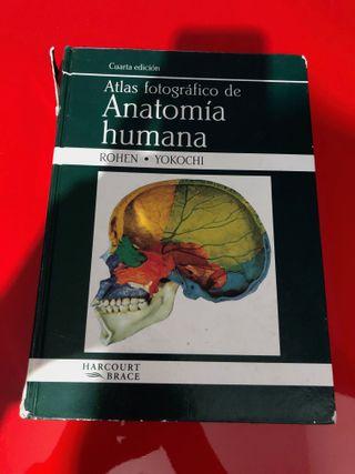 Atlas Anatomia Humana Rohen de segunda mano por 30 € en Barcelona en ...