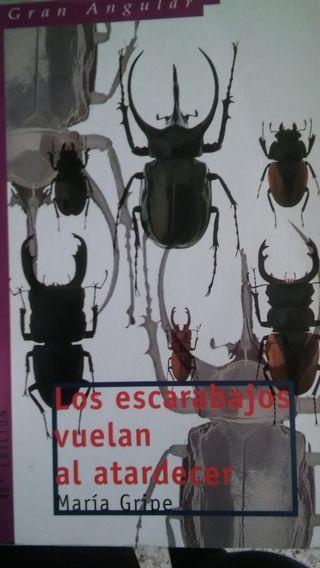 Los escarabajos vuelan al atardecer. María Gripe