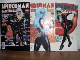 SpiderMan-Gata Negra: El mal que hacen los hombres