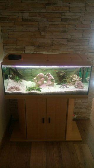 acuario 180 litros Eheim con mueble y accesorios