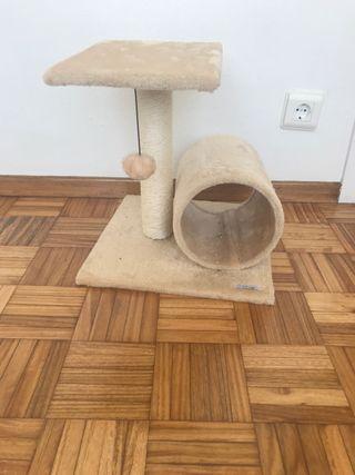 Estructura gatos