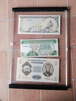 archivadores para billetes