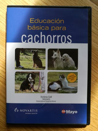 DVD educación para cachorros