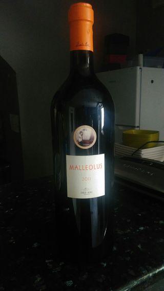 Botella vino gigante