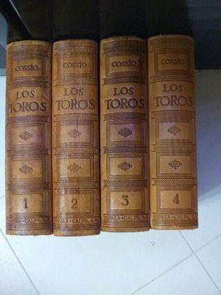 LOS TOROS COSSIO