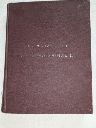 las maravillas del reino animal II