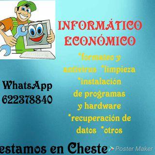 Informático económico