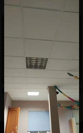 techo desmontable