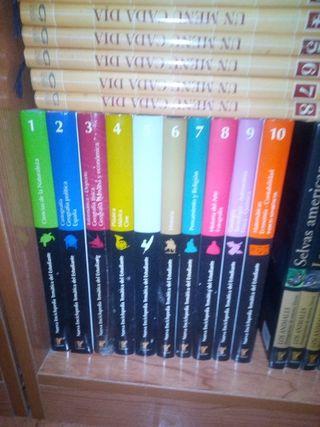 colección de libros temática del estudiante