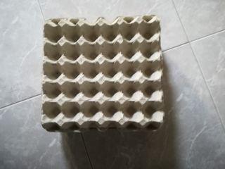 cartones de huevos