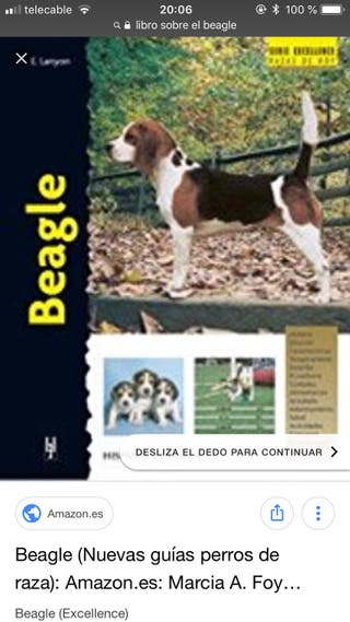 Beagle, libro sobre la raza