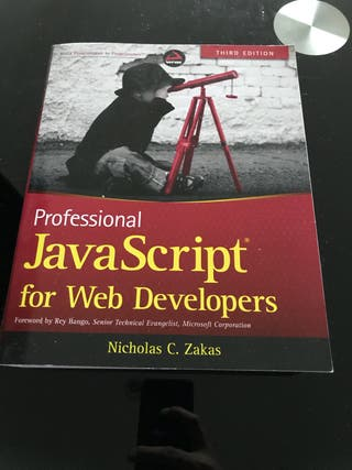 Professional Javascript book