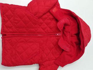 chamarra roja bebé 6-9 meses invierno husky