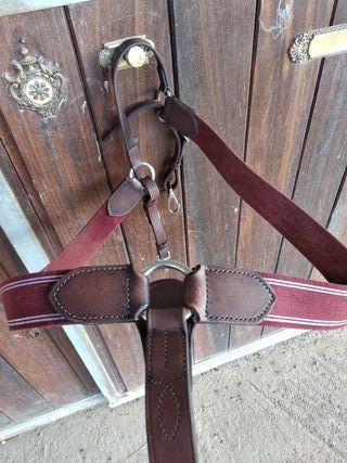 Pechopetral elastico para caballo
