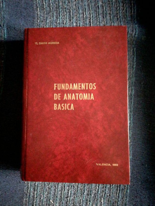 Libro Fundamentos de Anatomía Básica de segunda mano por 20 € en ...