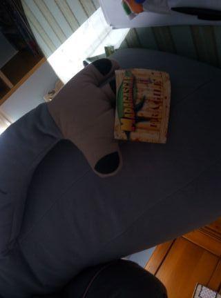 Muñeco Hipopótamo Madagascar. GIGANTE.