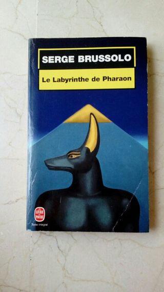 Novela en francés