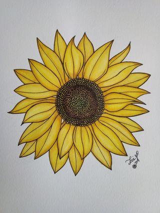 Dibujo con aquarelas