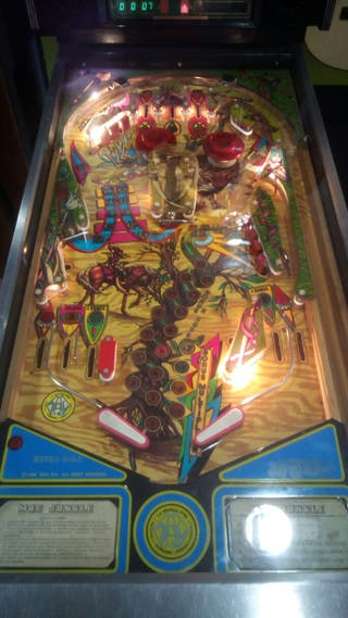 MACASHTERS VENDE PINBALL MAC JUNGLE 86