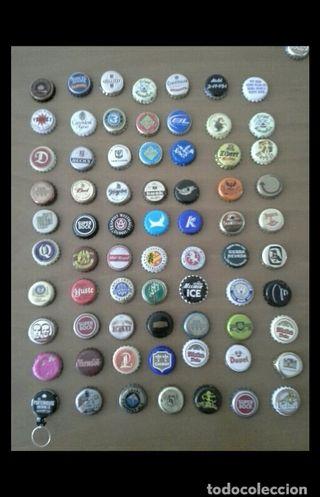 Lote 70 chapas de cerveza