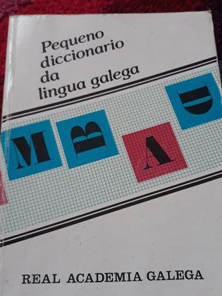 diccionario gallego