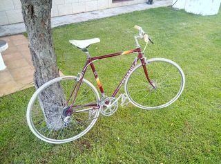 Bici Peugeot clasica tipo Fixie
