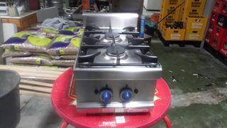 Cocina gas dos fuegos