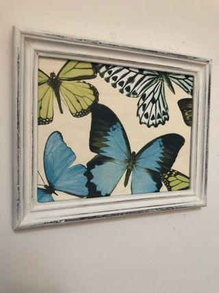 Cuadro print mariposas
