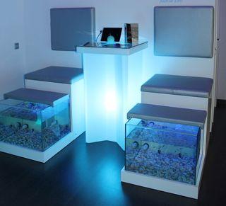 2 unidades Fish Spa completas (individuales).