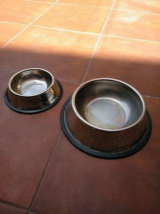 comederos de perro
