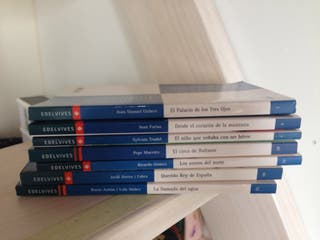 Lote 7 libros Edelvives lectur
