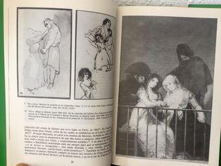 Goya y sus críticos, Nigel Glendinning