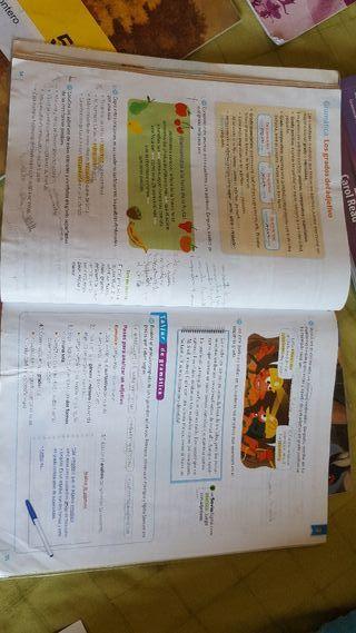 Libros Lengua 5 U00b0primaria Sm Savia De Segunda Mano Por 10