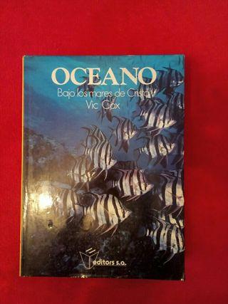 Oceanos bajo los mares de cristal Vic Cox