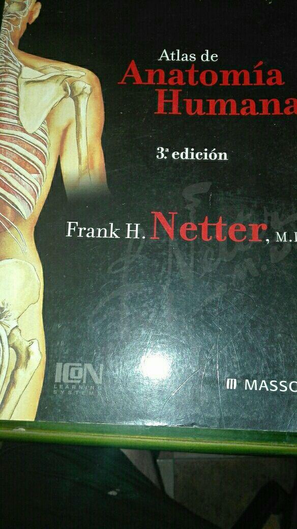 Atlas de Anatomía Netter de segunda mano por 60 € en Las Palmas de ...