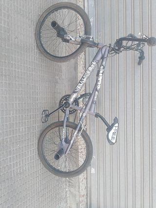 BMX Freestyle Tijuana